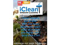 Gutter clearance any size house £80 !