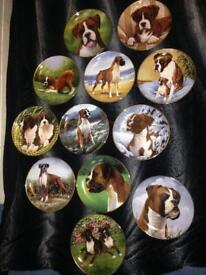 Plates.boxer dog. Painting of boxer dog