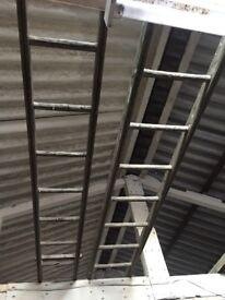 3 metre wooden ladder