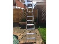 Light weight step ladder