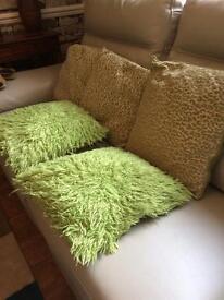 5 green cushions