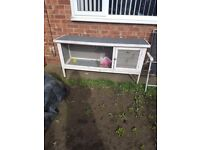 Rabbit hutch. Immaculate condition only had it 3 month