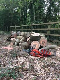 Logs For Sale Hardwood + Softwood