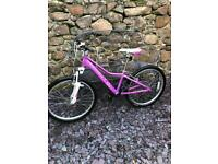 Giant Areva Lite 20 Inch Girls Bike