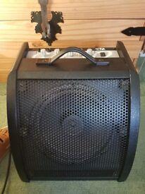 Amplifier 30W
