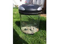 Fish tank 19 litres pod