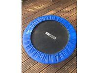 Pro-fitness Mini Trampoline