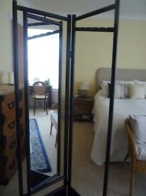 Cheval Mirror and coat stand