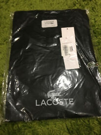 mens xxxl lacoste t shirt brand new