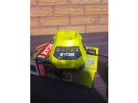 RYOBI 18 v Fast Charger for one + one Batteries,