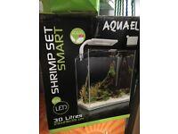 New shrimp fish tank