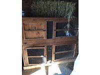 Double story rabbit hutch