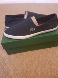 Lacoste plimsoles. Siz 8 available now. Brand new with box. RRP £43.
