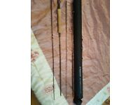 Wychwood truefly 10ft rod