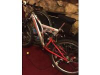 Bike sentinel