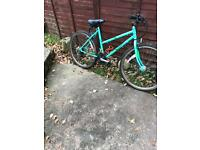 Ladies Raleigh mountain bike 18 inch frame