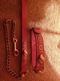 Pink staffie collar&lead set