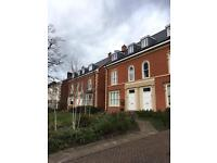 2 bed apartment olton