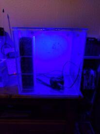 TMC Aquahabitat 60 litre aquarium including lights, pump, media tower