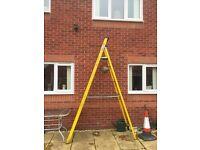 Werner 12 Step ladders