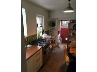 THREE SINGLE ROOMS TO RENT, SEVEN SISTERS