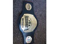 Kickboxing belt