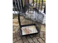Birds cage (suitable for 4 birds)