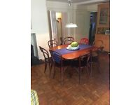Mahogany Table and 8 Chairs