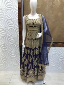 Indian ladies party clothing on rent too Lehnga Anarkali gown