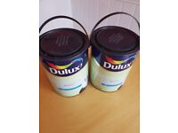 2 5LITRE WILLOW TREE GREEN DULUX PAINT