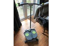 Twist and shape exercise machine