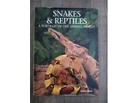 Snakes and Reptiles a Portrait of the Animal World