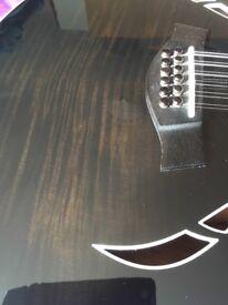 Taylor T5 12 string hybrid guitar