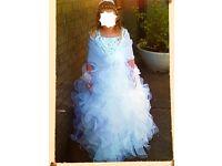 Stunning holly communion dress & accessories