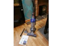 Dyson Animal DC40 Ball upright vacuum cleaner