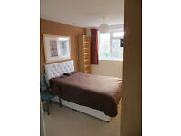 Furnished double room in Cotham flat, £380 p.c.m.