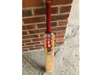 Bradbury Cricket Bat