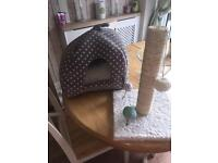 Cat scratch post and or bed