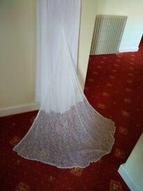 Bnwt Viva wedding dress. Lace train. Size 10