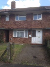 3 Bed House to rent or share