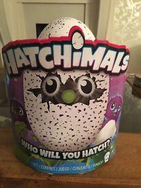 BNIB Purple Hatchimal £85