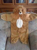 Cute Children Lion Costume