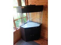 Seabray corner aquarium on black ash effect cabinet - approx 120 litres (26 gallons) capacity