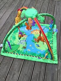 Fisher-Price Rainforest Gym