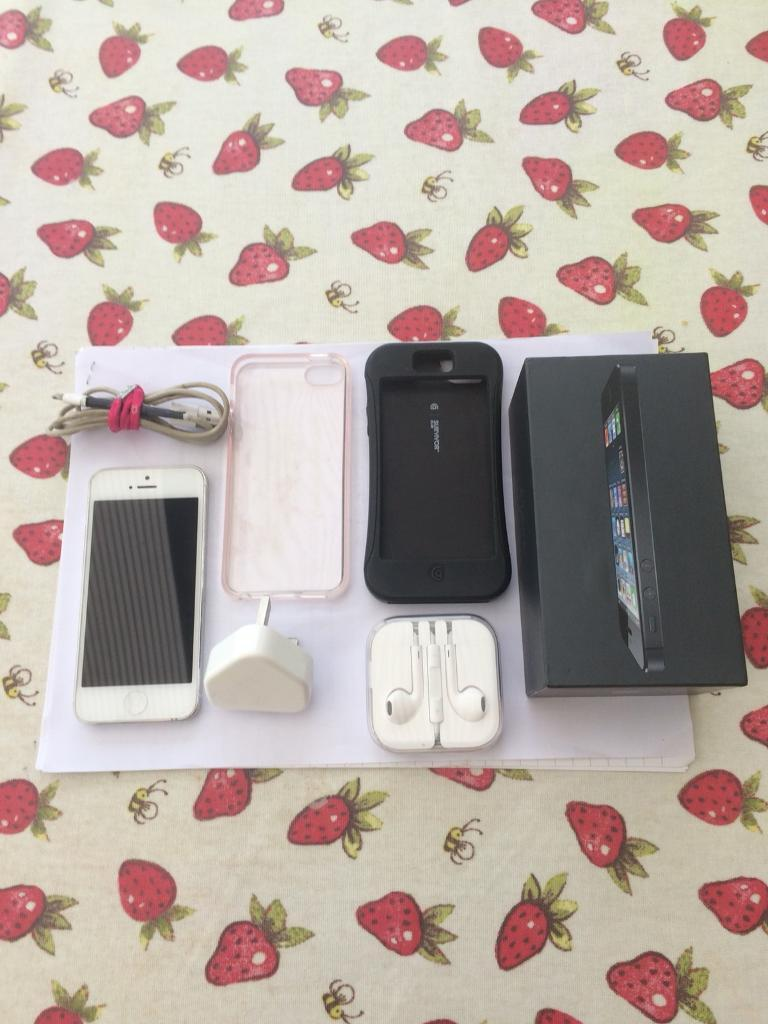 Apple iPhone 5 and case