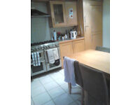 Large double ensuite room in beautiful houseshare. All bills included. Near UEA & NNUH