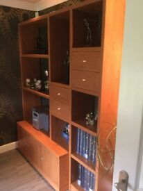 Display and Storage Unit