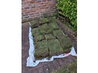 Free turf (collection only)