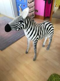 Large sit on zebra