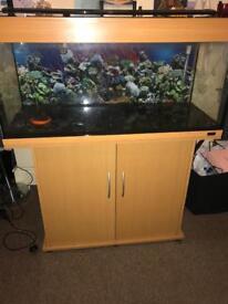 Empty fish tank all ready to go